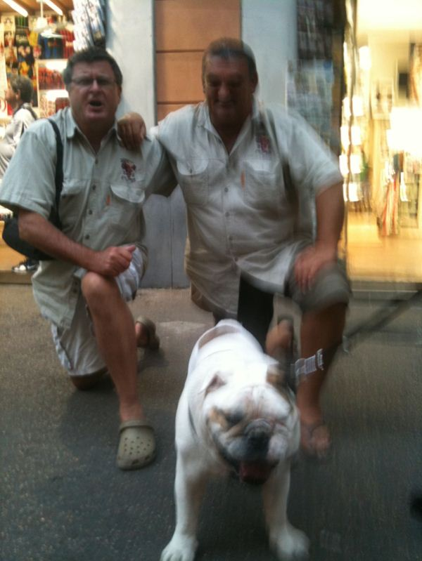 Wuff wuff …. Team bulldog found a live relative………
