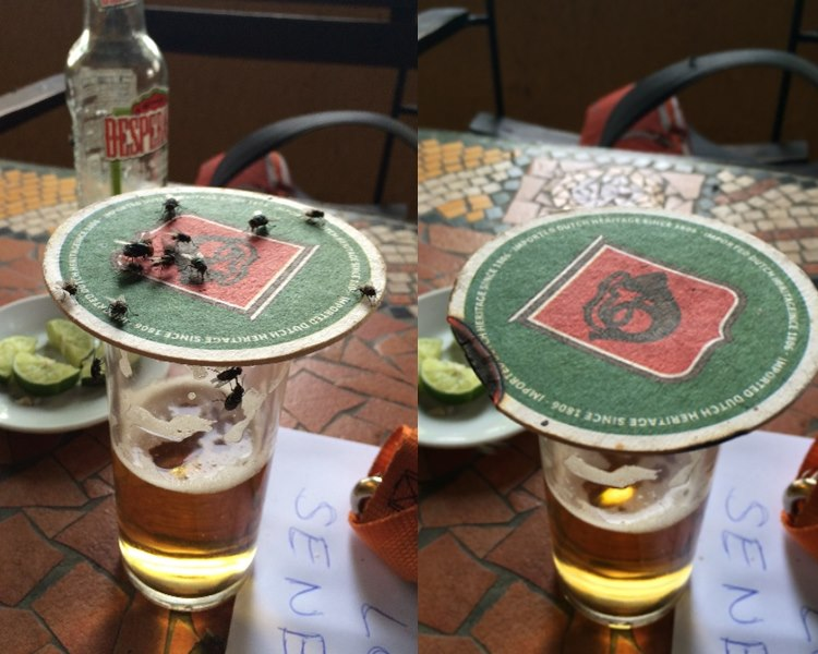 lightning up a beer coaster - Fly deterant