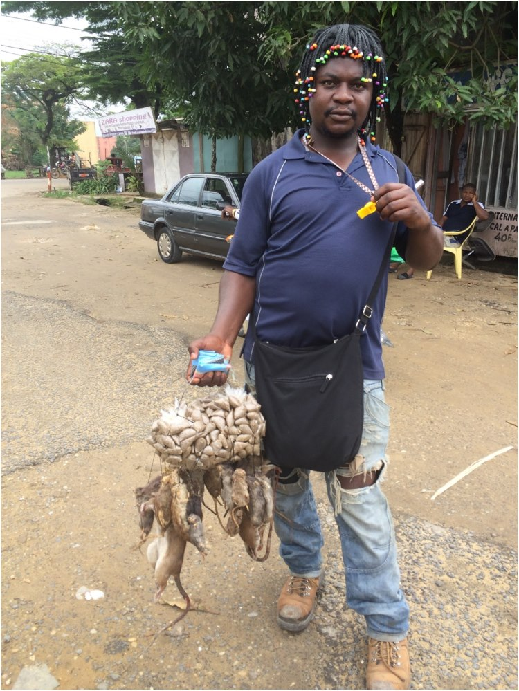 Local delicatessens…. For sale on the streets in Douala…..